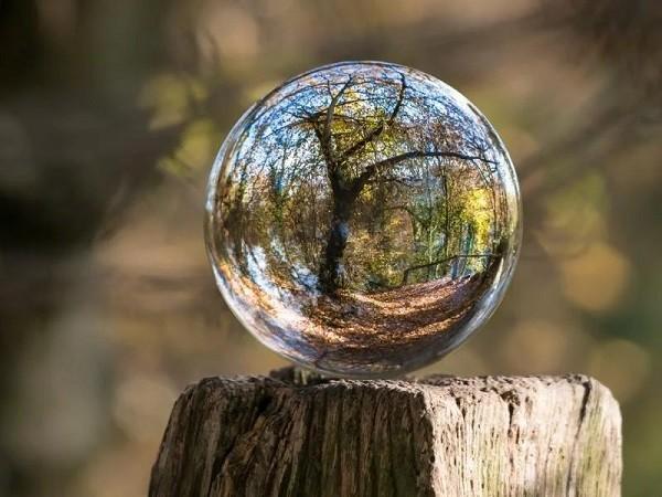 Ανακοίνωση ΟΒΥΕ για την Παγκόσμια Ημέρα Περιβάλλοντος